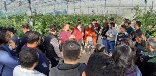AÜ öğrencileri topraksız tarım seralarını ziyaret etti