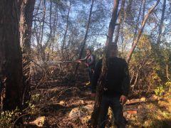 Antalya'da çamlık yangını