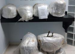 Antalya'da uyuşturucu operasyonuna 14 tutuklama