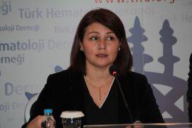 THD Yönetim Kurulu Araştırma Sekreteri Prof. Dr. Meltem Kurt Yüksel: