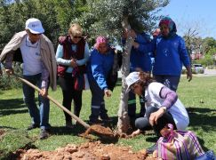 Büyükşehir'den 'Dünya Günü'nde anlamlı kutlama