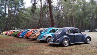 Vosvos araç tutkunları piknikte bir araya geldi