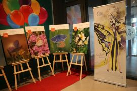 Antalya Kelebekleri Sergisi