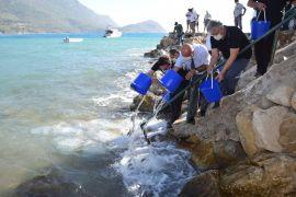 Kumluca'da 5 bin levrek yavrusu denizle buluştu